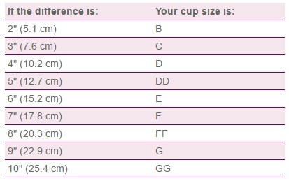Xpanda Measuring Bra Cup Size UK